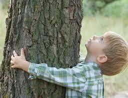 bambino abbraccia albero
